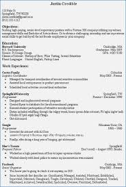 What Is The Objective Section On A Resume What to Write In the Objective Section Of A Resume buildbuzz 2
