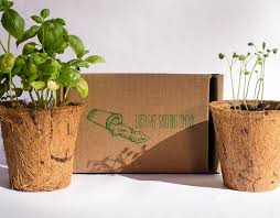 indoor herb garden kit. Amazon.com : Indoor Herb Garden Kit (3 Pack) By Earth Safe Gardening Company | Basil, Parsley And Sage Seeds Mix With Biodegradable Coconut Husk Pot