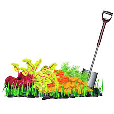 Image result for gardening tools clipart