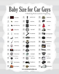 Pregnancy Fruit Size Chart 27 Expository Sizes Of Baby In Pregnancy