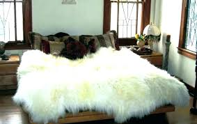 champagne pink sheepskin rug pale