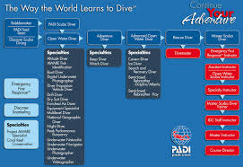Padi Speciality Courses Cyprus Diving Padi With A Difference