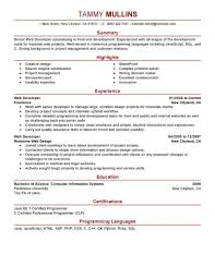 Vibrant Ideas It Resume Examples 7 Information Technology Example