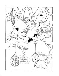 Small Picture Bird Feeder Coloring Coloring Coloring Pages