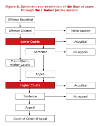 Criminal Justice System In Nsw Structure