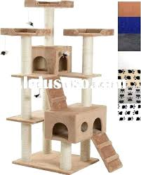 outdoor cat house plans cat house plans lovely exciting cat house plans gallery best idea home outdoor cat house plans