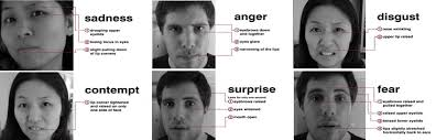 body language signs and gestures leading personality face expressions