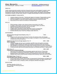 Automobile Sales Resume Top Result New Sample Resume For Automobile Sales Executive Gallery 18