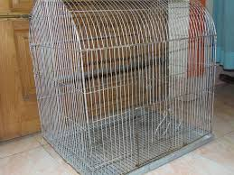 Bird Cage Trap Design Simple Cage Trap 5 Steps Instructables