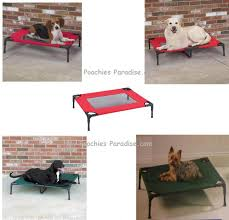 elevated pet cots