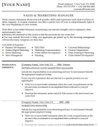 Sales Manager Cv Template Free 40 Top Professional Resume Templates