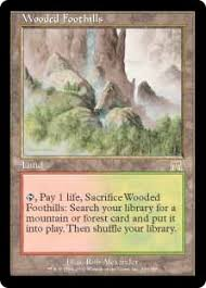 with the value of basic lands being incredibly high in g w pany i have long thought about playing a sixth forest over the second temple garden