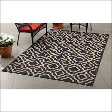 marshalls area rugs home goods rugs medium size marshalls home goods area rugs