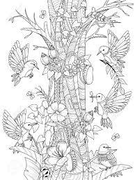 Bovenste Deel Kleurplaten Bloemen En Planten Krijg Duizenden