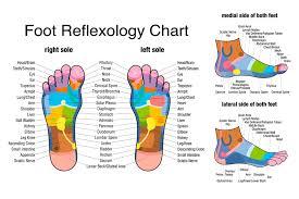 65 Bright Reflexology Chart Arch