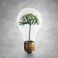 Light Bulb With Tree Inside Glass Light Bulb With Green Tree Inside