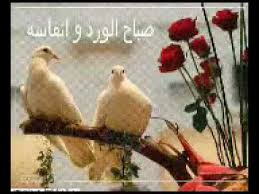 Good Morning Love Quotes In Arabic Best Of صباح الخير Good Morning Best Arabic Song 24 YouTube
