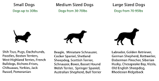 Dog Compatibility Chart How Big Will My Dog Be Chart Simplified Myers Briggs