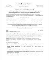 Non Profit Resume Samples Executive Director Resume Sample Non