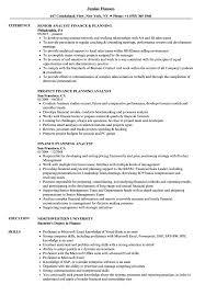 Finance Planning Resume Samples Velvet Jobs