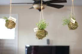 wall planters indoor windows decor wall planters indoor home depot wall hanging  planters indoor wall planters