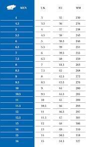 Fiesta Size Chart