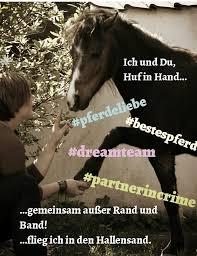 Istnichtso Pferde Lehrens Webseite