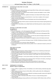 Download Delivery Manager Resume Sample as Image file