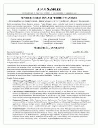 Sample Cv For Business Analyst It Business Analyst Cv