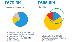 Charity Pie Charts A Tangled Web Ten Ways The Charity Commission Website Makes