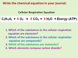 5 write the chemical equation