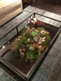 DIY Terrarium Coffee Table Close Up | Terrariums | Pinterest | Diy terrarium,  Terraria and Coffee