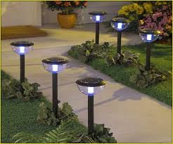Small Picture Solar Garden Lights Guide Wilson Rose Garden