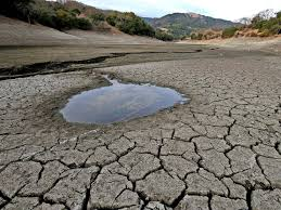 scarcity of water essay water scarcity threats wwf scarcity of  scarcity of water essay what are the causes of water scarcity what are your