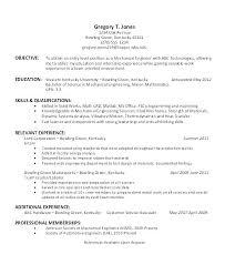 Sample Resume For Team Lead Position Team Leader Sample Resume Format Software Development Lead