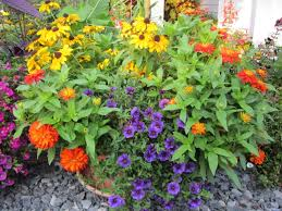 how to plant flowers in large planters