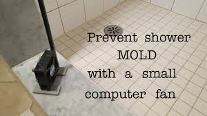 how to prevent shower mold that actually works