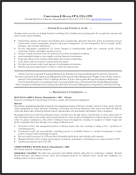 Internal Resume Format Template Audit Manager Auditor Resumes