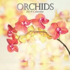 orchids 2019 wall calendar calendars books gifts