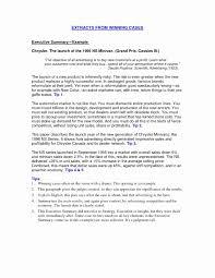Resume Professional Summary Unique Summary Example For Resume Pdf