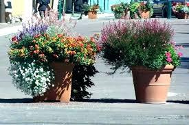 garden pot ideas for large flower pots big photograph outdoor winter l