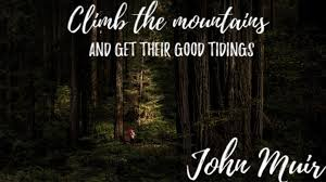 40 John Muir Quotes To Inspire You To Take A Muir Woods Tour Awesome Woods Quotes