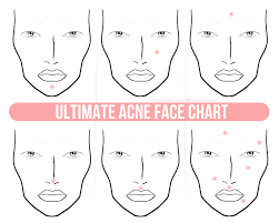 Which Organs Are Causing Your Acne Face Mapping