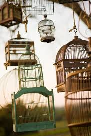 Birdcages. OK, I am so going to fill these with fairy lights for the next  festival. Off to the auctions I go. *sigh* someone is realy going to get  peed with ...