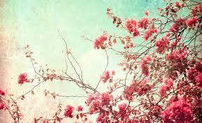 desktop wallpaper vintage floral. Delighful Vintage 8 Floral Desktop Wallpaper8 For Desktop Wallpaper Vintage Floral