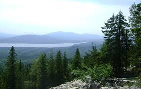 Природа растения и животные Южного Урала