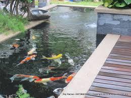 Pond Design Fish Pond Design Fountain Design Trading