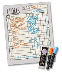 Daily Checklist Chart