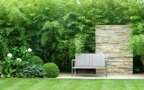Small Picture Inspiring garden ideas from the Society of Garden Designers