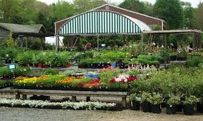 a portion of conley s nursery and landscape display yard